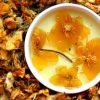 trà kim liên hoa