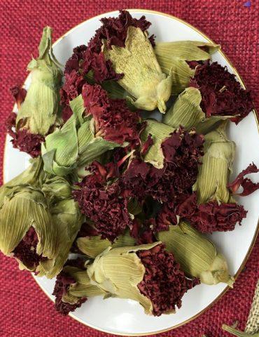trà hoa cẩm chướng